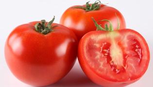 番茄怎么保存时间长