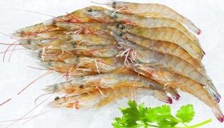 怎样选新鲜的虾