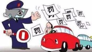 手机上怎么查驾照分
