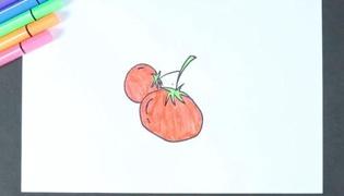 西红杮简笔画