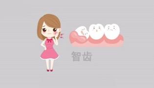 智齿是什么