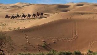 沙坡头旅游攻略
