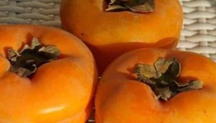 柿子的功效與作用