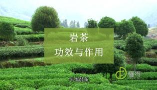 岩茶的功效与作用