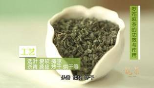 罗布麻茶的功效与作用