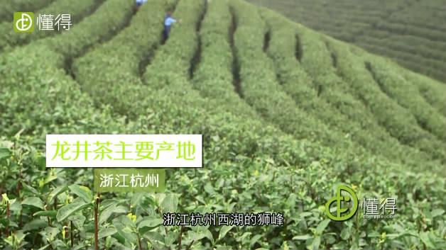 碧螺春和龙井的区别-龙井产自浙江杭州