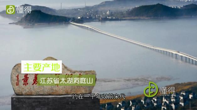 碧螺春的产地-碧螺春产地是江苏太湖洞庭山