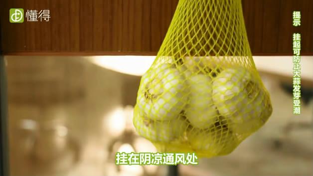 大蒜如何保存-将大蒜放入网袋中并挂在阴凉透风处