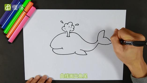 鲸鱼怎么画-画出鱼背鱼腹和鱼尾