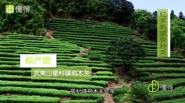 红茶有哪些-原产武夷山星村镇桐木关