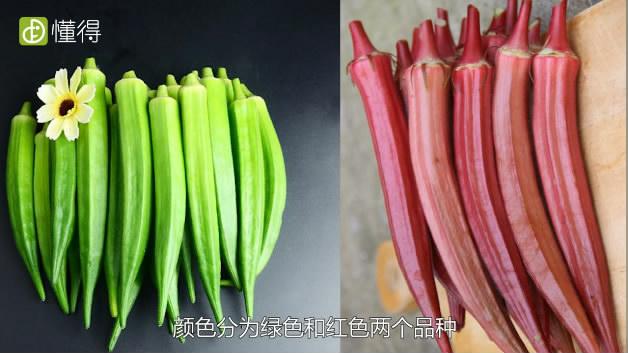 秋葵的功效与作用-颜色分类